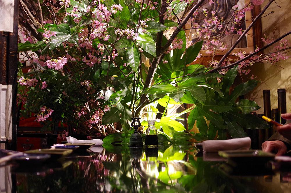 写真6 桜2