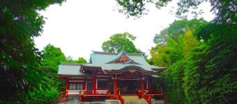 吉祥寺随一のパワースポットは、武蔵野八幡宮!