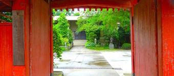 吉祥寺駅前の小江戸「寺町」を巡ろう!(四軒寺)